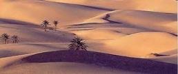 3fc00-desert
